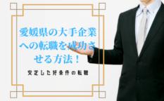 愛媛県の大手企業への転職を成功させる方法!安定した好条件の転職